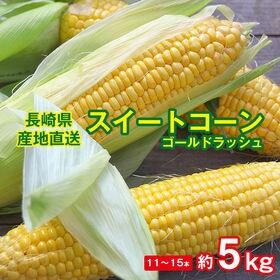 【予約受付】5/20~順次出荷【約5kg(11~15本)】ス...
