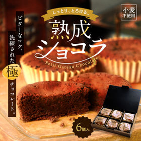 しっとりとろける神戸熟成ショコラ 6個入り