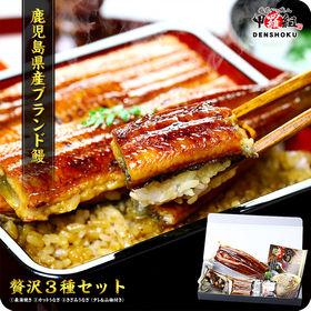 鹿児島県産うなぎ 贅沢3種食べ比べセット