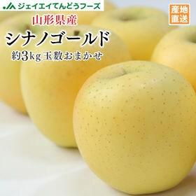 【約3kg(玉数おまかせ)】[秀品] 山形県産りんごシナノゴ...