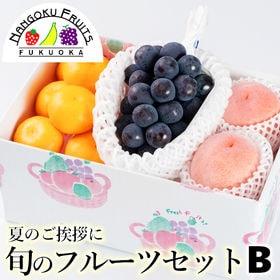 【予約受付】7/1から順次出荷 旬のフルーツセットB(葡萄・...