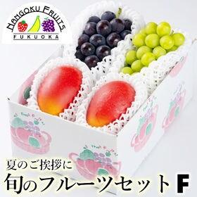 【予約受付】7/15から順次出荷 旬のフルーツセットF(黒・...