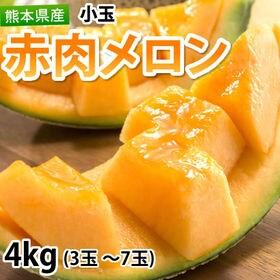 【予約受付】6/4~順次出荷【4kg(3~7玉)】熊本県産 ...
