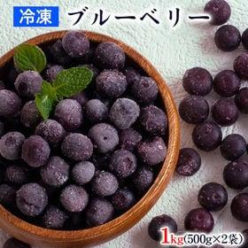 【1kg(500g×2)】冷凍ブルーベリー 九州産 ※サイズ...