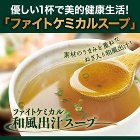 美食スタイルデリ【20食分】ファイトケミカル和風出汁スープ