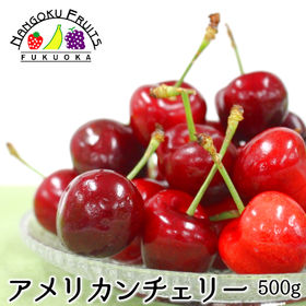 【予約受付】5/15から順次出荷[500g]フルーツ屋さんが...