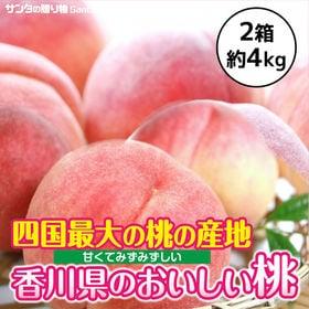 【計4kg(6-9玉入×2箱)】香川県産 桃(もも) 四国最...
