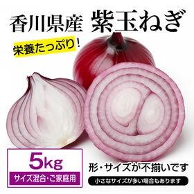 【約5kg(サイズ混合・ご家庭用)】紫玉ねぎ 香川県産  色...