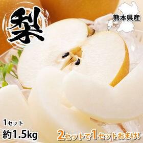 【予約受付】8/3~順次出荷【約1.5kg】熊本県産 梨《個...