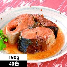 【190g×40缶】<国産>さば味噌煮缶詰