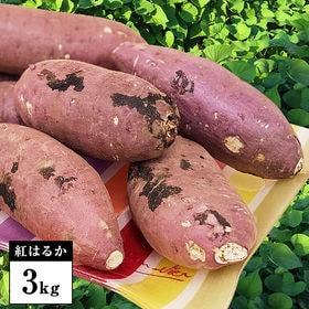 【3kg】鹿児島県産「紅はるか」