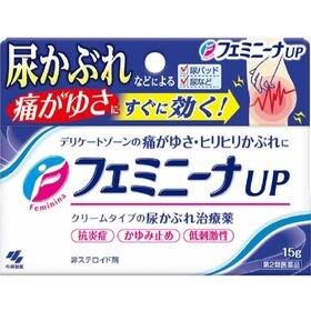 【第2類医薬品】フェミニーナUP 15g 尿かぶれ かゆみ止...