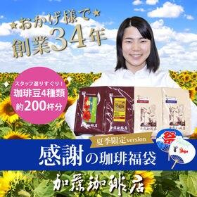 【計2kg(500g×4種)】感謝の珈琲飲み比べ 夏季限定v...