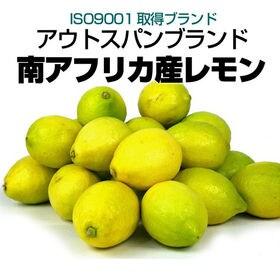 【約2kg】南アフリカ産 レモン(防カビ剤不使用)