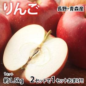 【予約受付】8/24~順次出荷【約1.5kg】りんご《個数・...