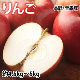 【予約受付】8/24~順次出荷【約5kg(4.5~5kg)】...
