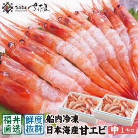 越前産 甘えび【中サイズ】1キロ(500g×2箱) 無添加 ...