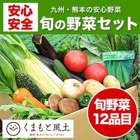 【1セット12品目】自家用野菜セット
