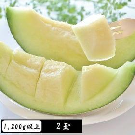 【1200g以上×2玉】<高級フルーツ>アールスメロン[マス...