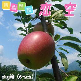 【予約受付】8/10~順次出荷【約2kg】青森県産 りんご(...