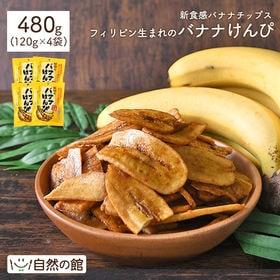 【120g×4袋】バナナけんぴ