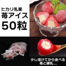 【50個入】苺アイス/苺のフレッシュ感&濃厚なミルク味の絶妙...