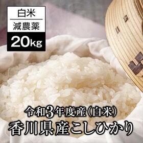 【予約受付】9/15~順次出荷【20kg】香川県産コシヒカリ...