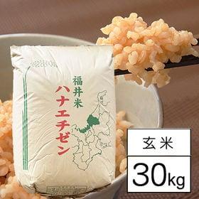 【30kg】 令和2年産 福井県産 ハナエチゼン 華越前 1...