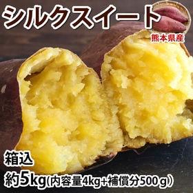 【予約受付】10/19~順次出荷【5kg(S~3L)】熊本県...