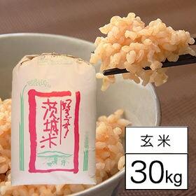 【30kg】 令和3年産 茨城県産あきたこまち 1等 玄米 ...
