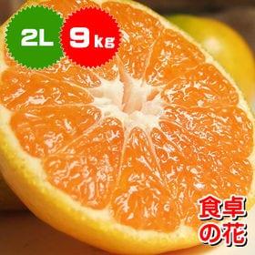 【予約受付】10/5~順次出荷【2L/約9kg】和歌山みかん...