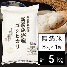 【予約受付】10/4~出荷 【5kg】JA十日町 3年産新潟...