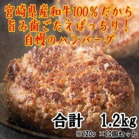 【120g×10個】≪ChaChatグルメ≫宮崎県産 黒毛和...