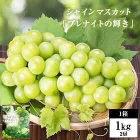 【1箱(1kg)】シャインマスカット「プレナイトの輝き」(化...