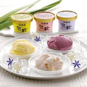 【計7個】「乳蔵」北海道アイスセット | 北海道の牛乳を使用したアイスクリーム。バニラ、ハスカップ、ストロベリーの3種類の味◎