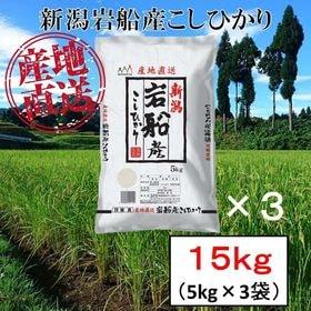 【15kg】新潟県岩船産 コシヒカリ 令和3年産