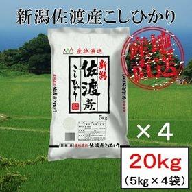 【20kg】新潟県佐渡産 コシヒカリ 令和3年産