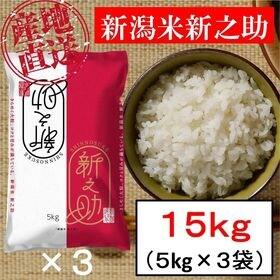【15kg】新潟米 新之助 令和3年産