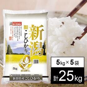 【25kg】新米 令和3年産 新潟県産コシヒカリ