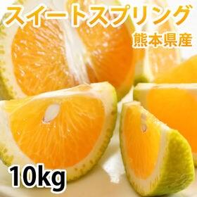 【予約受付】12/10~順次出荷【10kg】スイートスプリン...