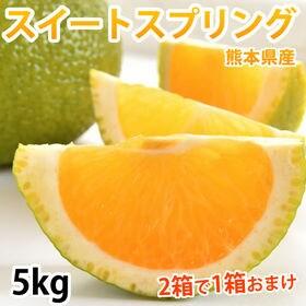【予約受付】12/10~順次出荷【5kg】スイートスプリング...
