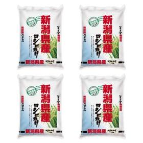【計20kg(5kg×4袋)】令和3年産 新潟県産コシヒカリ