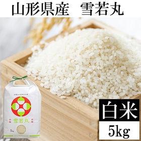 【5kg】令和3年産 山形県産 雪若丸 精米 新米 当日精米