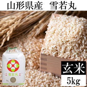 【5kg】令和3年 山形県産 雪若丸 玄米 新米