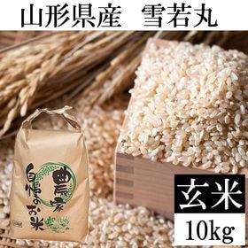【10kg】令和3年 山形県産 雪若丸 玄米 新米