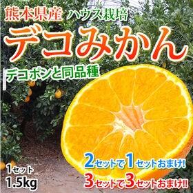 【予約受付】12/23~順次発送【1.5kg】熊本県産 ハウ...