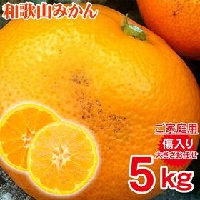 【予約受付】11/5~順次出荷【約5kg(サイズお任せ)】和...