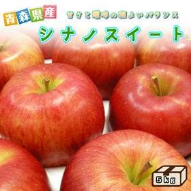 【予約受付】11/12~順次出荷【約5kg】青森県産林檎 シ...