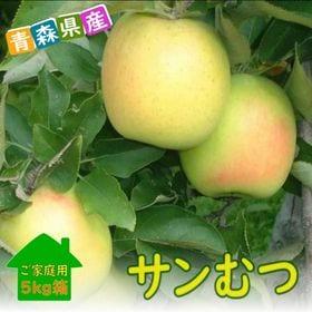 【予約受付】11/19~順次出荷【約5kg】青森県産林檎 サ...