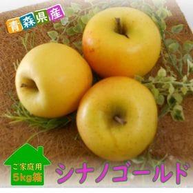 【予約受付】11/26~順次出荷【約5kg】青森県産林檎 シ...
